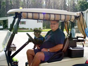 pet in community golf cart
