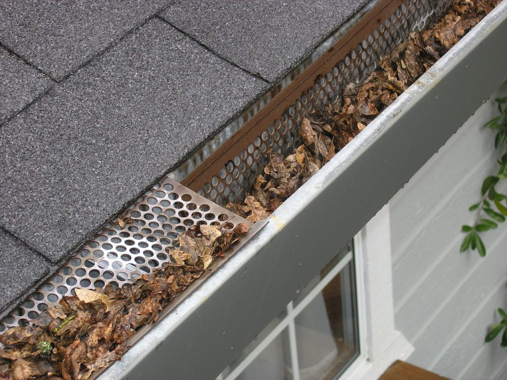 gutter clean up