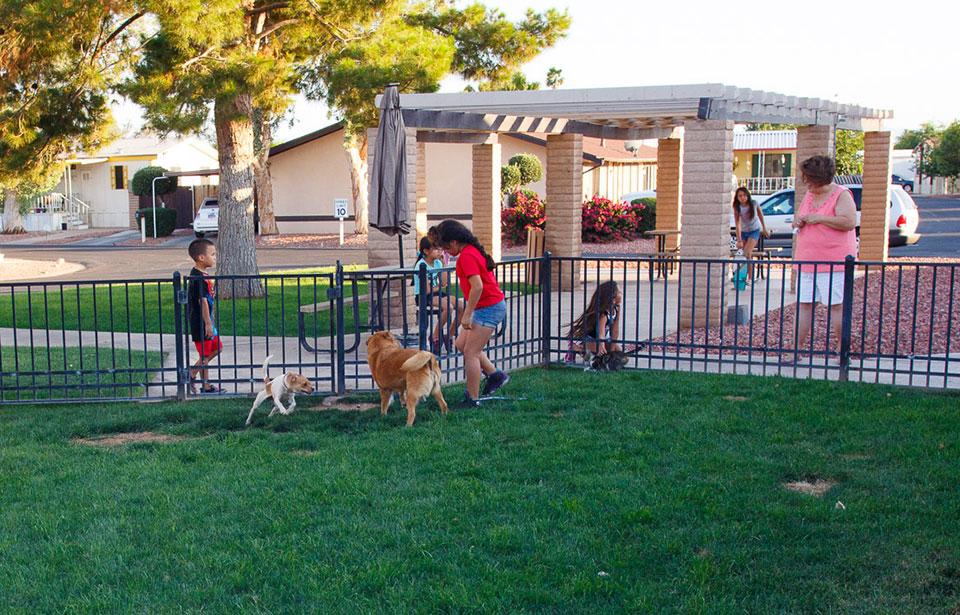 Arizona Manufacuted Home Community in Glendale