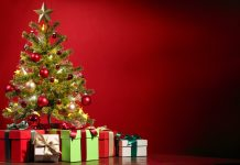 Small House Christmas Tree