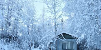 Stay warm in a mobile home in the woods