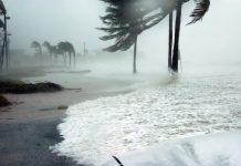 Flood Insurance Law Florida Coast