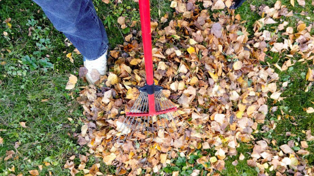 rake fall mobile home maintenance