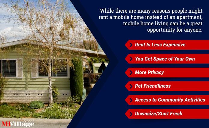 rent a mobile home versus apartment comparison