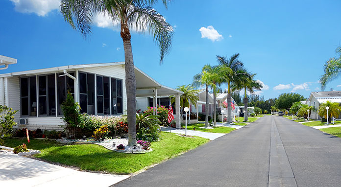 Palms trees and mobile home rent a mobile home