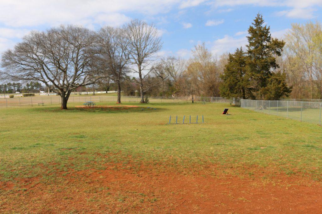 community dog park